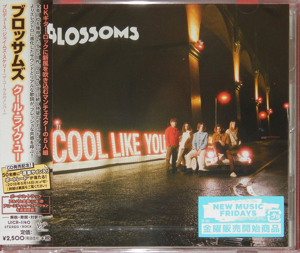 Download torrent Blossoms - Cool Like You (2018)