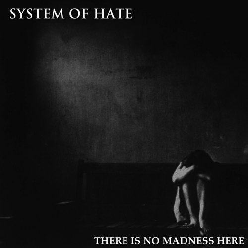 Download torrent System of Hate - There Is No Madness Here (2018)