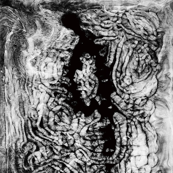 Download torrent Forests - Idol Collapse (2018)