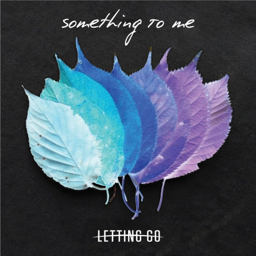 Download torrent Letting Go - Something to Me (2018)